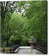 Bench Rows In Central Park  Nyc Canvas Print