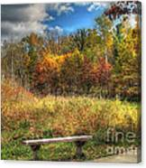Benched In Autumn Canvas Print