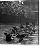 Benches In The Rain Bw Canvas Print