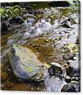 Bending Between The Rocks Canvas Print