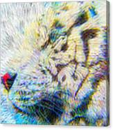 Bengal Explosion Canvas Print