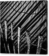 Benone - Shadow Fencing Canvas Print