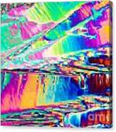 Benzoic Acid Crystals In Polarized Light Canvas Print