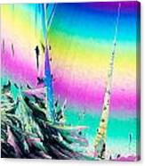 Benzoic Acid Microcrystals Coloful Abstract Art Canvas Print