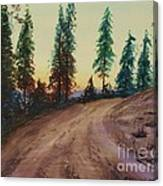 Bergebo Forest Canvas Print