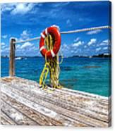 Bermuda Lifebelt Bite Canvas Print