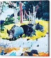 Bermuda  Settlers Canvas Print