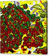 Berries Art Canvas Print