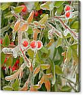 Winter Berries On Ice Canvas Print