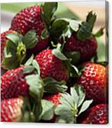 Berries In The Kitchen Canvas Print