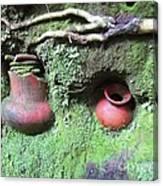 Berriles Pots Canvas Print