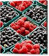 Berry Berry Nice Canvas Print