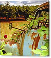 Berry Old Truck 2 Canvas Print