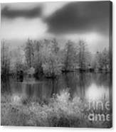 Between Black And White-24 Canvas Print