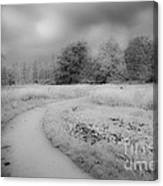 Between Black And White-25 Canvas Print