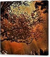 Bewitching Kansas Canvas Print
