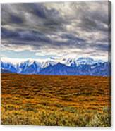 Beyond The Tundra Canvas Print