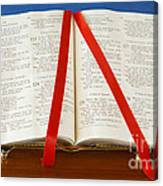 Bible  Canvas Print