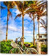 Bicycles Under The Palms Canvas Print