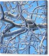 Bifurcations In White And Blue Canvas Print