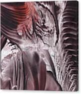 Big-bang Glimmer Canvas Print