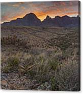 The Window View Of Big Bend National Park At Sunrise Canvas Print