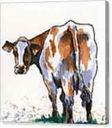 Big Bertha Canvas Print