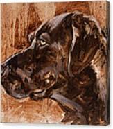 Big Brown Dog Canvas Print