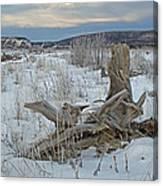 Big Delta Riverbed Canvas Print