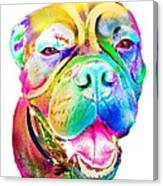 Big Dog Canvas Print