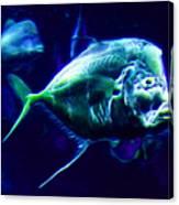 Big Fish Small Fish - Electric Canvas Print
