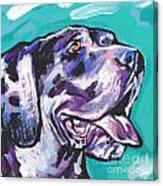 Big Harley Quin Canvas Print