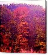 Big Hill Autumn Canvas Print