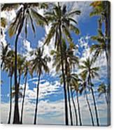 Big Island Hawaii Palm Stretch Canvas Print