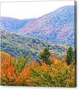 Big Pisgah Mountain In The Fall Canvas Print