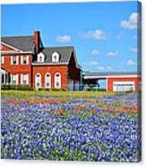 Big Red House On Bluebonnet Hill Canvas Print