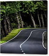 Big  Road Canvas Print