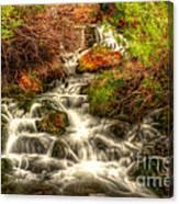 Big Spring In Sheep Creek Canyon Canvas Print
