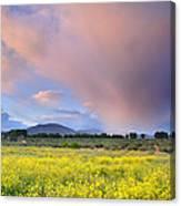 Big Storm And Tornado At Sunset Canvas Print