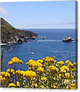 Big Sur Loves Yellow By Diana Sainz Canvas Print