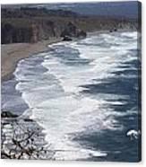 Big Sur Surf Canvas Print