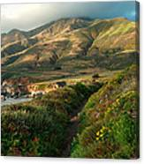 Big Sur Trail At Soberanes Point Canvas Print