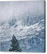 Big Tree At The Mountains Canvas Print