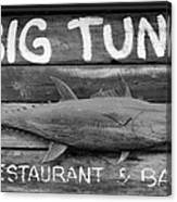 Big Tuna Canvas Print