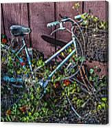 Bike In The Vines Canvas Print