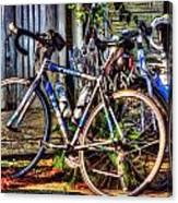 Bike Trek Canvas Print