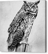 Bill's Great Horned Owl Canvas Print