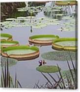 Biltmore House Water Garden Canvas Print