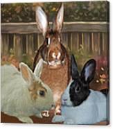 Bindy Bella And Butterscotch Canvas Print
