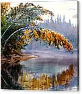 Birch Creek Beauty Canvas Print